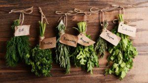 herbs-fresh-organic-green